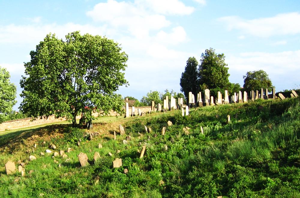 dolni-kounice-zidovsky-hrbitov